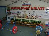 Bořislavský Gigant v pozvedu, 2010