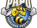 Parkanon Puntti PaPu ry